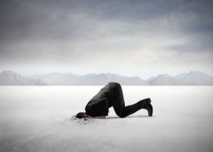 "Leadership speakers, Bob Vanourek and Gregg Vanourek, use an image of a man with his head buried in a vast desert of sand to illustrate the ""fixed mindset"" that is so detrimental to leaders."