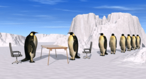 Penguins lining up for interviews